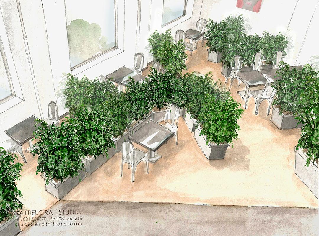 separatore-arboreo-ristorazione-rattiflora