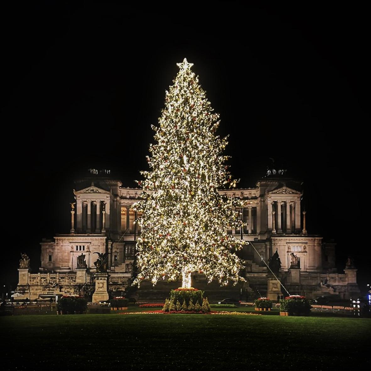 Christmas_rattiflora_1220_05